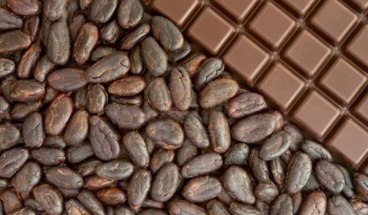 Il cacao, da cui si ricava la cioccolata