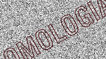 omologia
